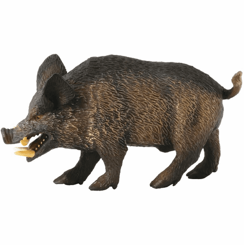 CollectA Wild Boar