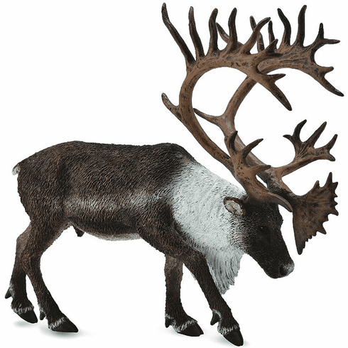 CollectA - Woodland Caribou