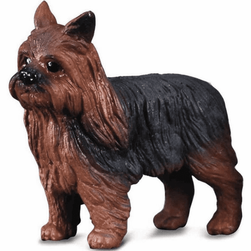 CollectA - Yorkshire Terrier
