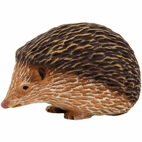 Mojo - Hedgehog