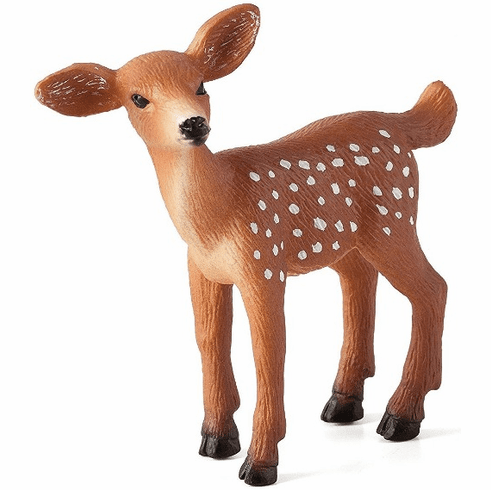 Mojo - White Tailed Deer - Fawn