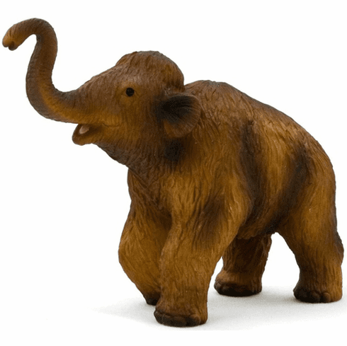Mojo - Woolly Mammoth Calf