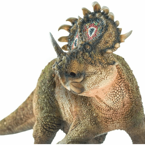 PNSO - Damaged Box -  A-Qi The Sinoceratops