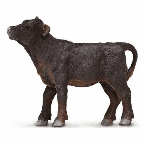 Safari Ltd. - Angus Calf