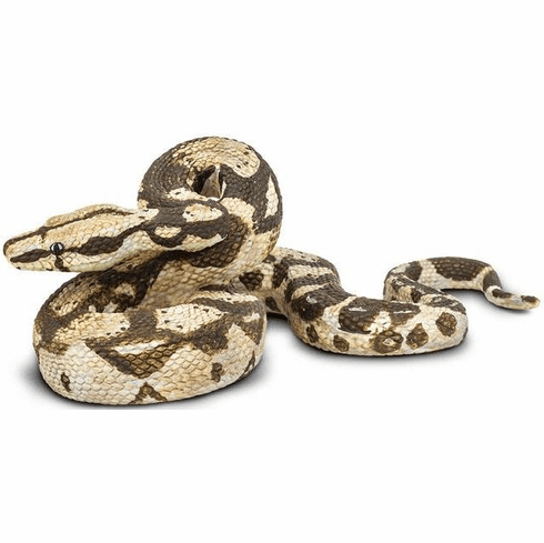 Safari Ltd. - Boa Constrictor