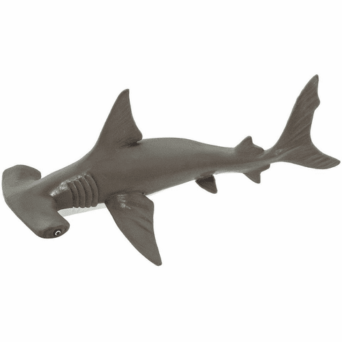 Safari Ltd. - Hammerhead Shark Baby