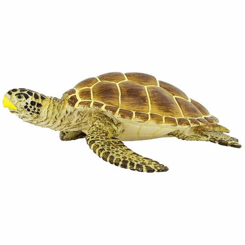 Safari Ltd. - Loggerhead Turtle