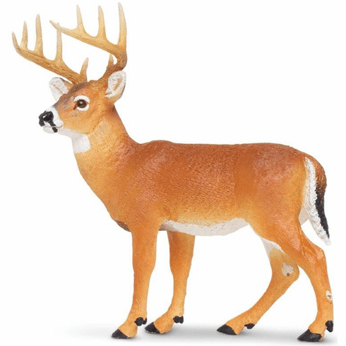 Safari Ltd. - Whitetail Buck