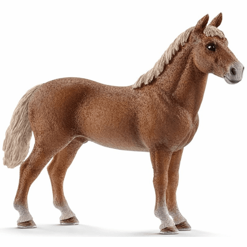 Schleich - Morgan Horse Stallion