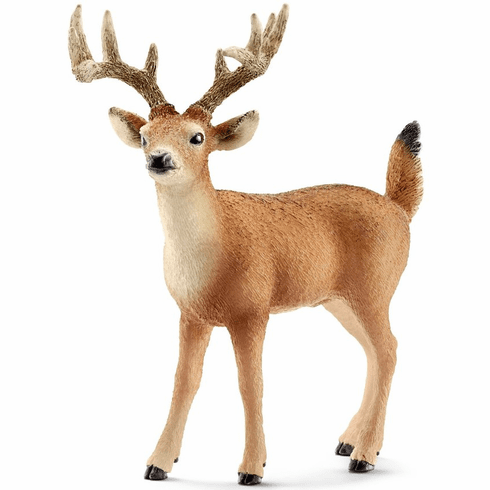 Schleich - White Tailed Buck