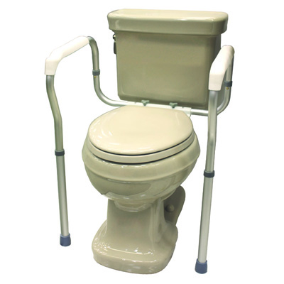 Roscoe Medical Toilet Safety Frame Color: Gray ROS-TSF1