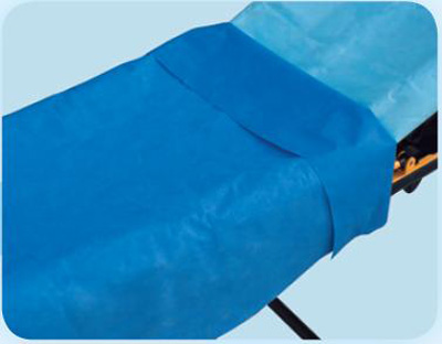 Stretcher Sheet Everyday Flat 40 X 90 Inch Blue Tissue / Poly Disposable