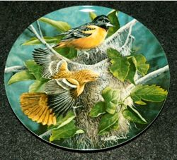 1985 Collector Plate The Baltimore Oriole From Birds of Your Garden Collection