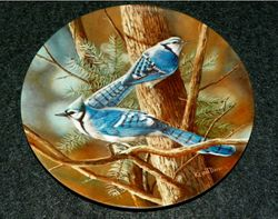 1985 Collector Plate The Blue Jay From Birds of Your Garden Collection