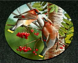 1987 Collector Plate The Cedar Waxwing From Birds of Your Garden Collection