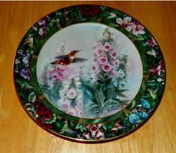 Collector Plate Lena Liu's Hummingbird Treasury The Rufous Hummingbird