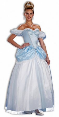 Adult Classic Storybook Princess Costume, Size M/L