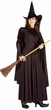 Adult Classic Wicked Witch Costume, Size M/L