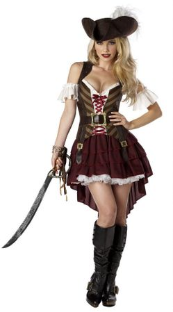 Adult Sexy Swashbuckler Costume