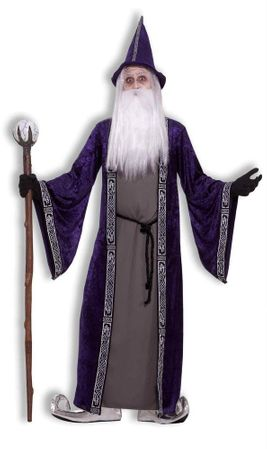 Adult Men's Wise Wizard Costume, Size M/L