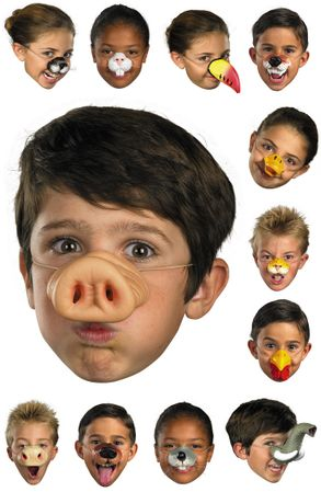 Animal Nose Mask