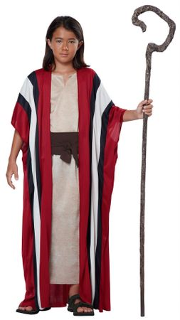Child's Shephard or Moses Costume