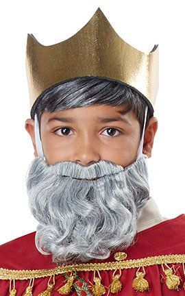 Child's Gray Wiseman Beard and Mustache