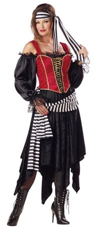 Deluxe Adult Pirate Lady Costume, Size Small