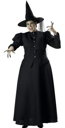 Plus Size Deluxe Witch Costume