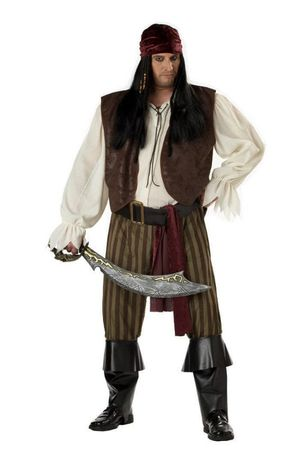 Men's Plus Size Rogue Pirate Costume