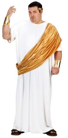 Men's Plus Size Hail Caesar Costume