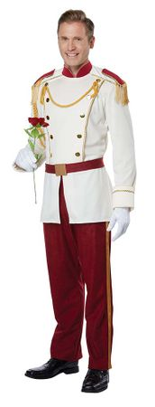 Men's Royal Storybook Prince Costume