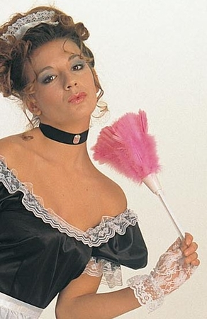 Pink Feather Duster