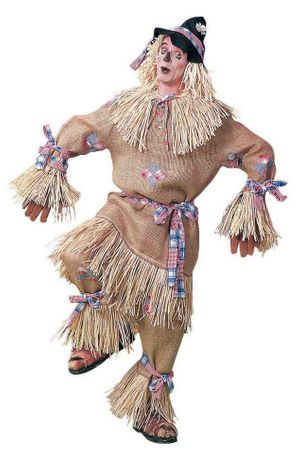 Plus Size Adult Scarecrow Costume