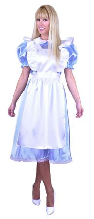 Plus Size Classic Alice in Wonderland Costume