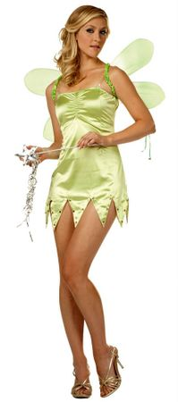 Adult Sexy Green Fairy Costume with Wings, Size XL
