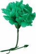St. Patrick's Day Green Boutonniere - Final Sale