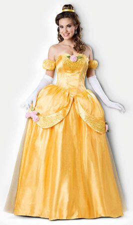 Theatrical Quality Adult Beautiful Princess Costume