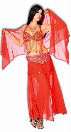 Women's Deluxe Red/Gold Harem Dancer Costume, Size S/M