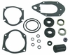 18-2635 Lower Unit Seal Kit