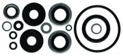 18-2656 Lower Unit Seal Kit