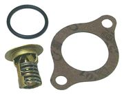 18-3677 Thermostat Kit