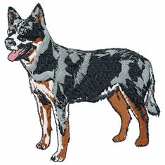 acd001 American Cattle Dog (small or large design)