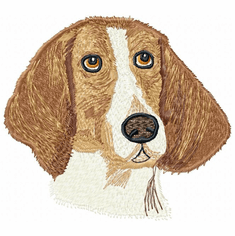 amerfox006 American Foxhound (small or large design)