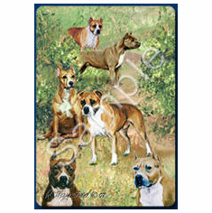 American Staffordshire Terrier Playing Cards