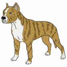 ampit002 American Pitbull (small or large design)