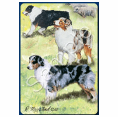 Australian Shepherd Playing Cards