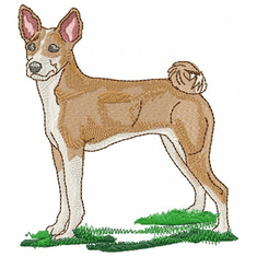basenji005 Basenji (small or large design)