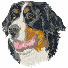 bmd001 Bernese Mountain Dog (small or large design)