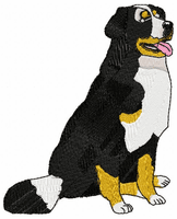 bmd005 Bernese Mountain Dog (small or large design)